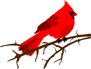 Cardinal clipart Red Clipart Beautiful Tree cardinal