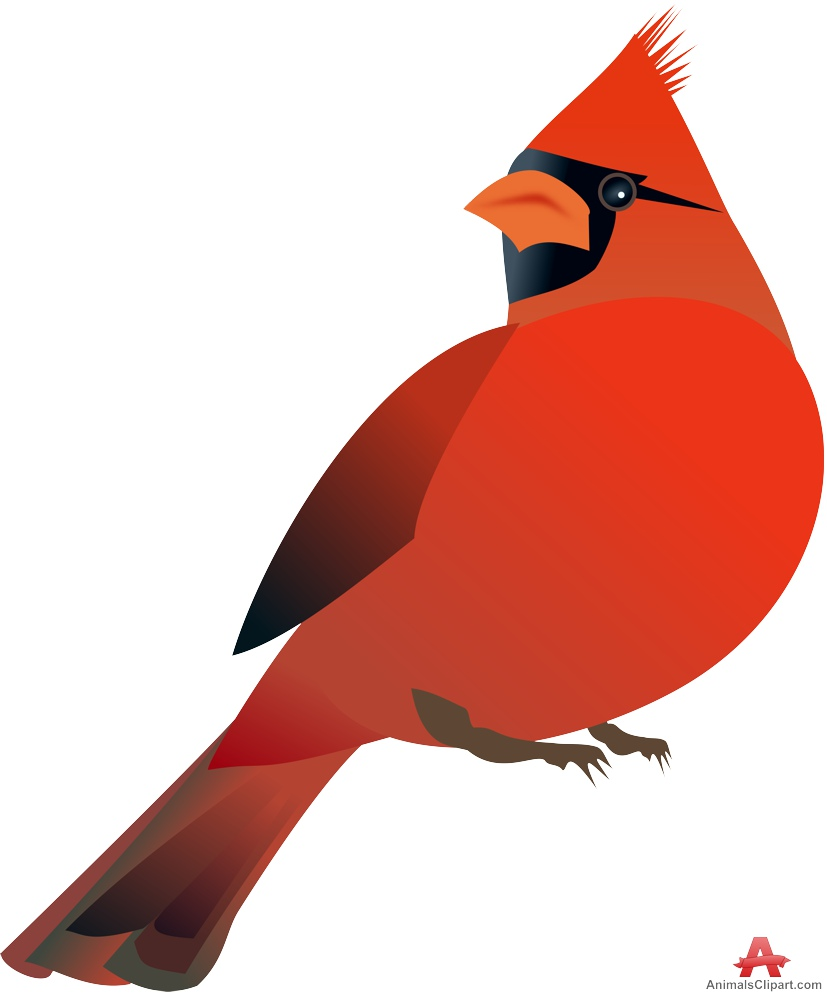 Cardinal clipart Clipart 2 Northern red cardinal