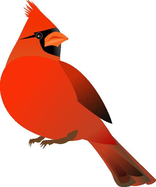 Cardinal clipart Cardinal Red cardinal clipart kid