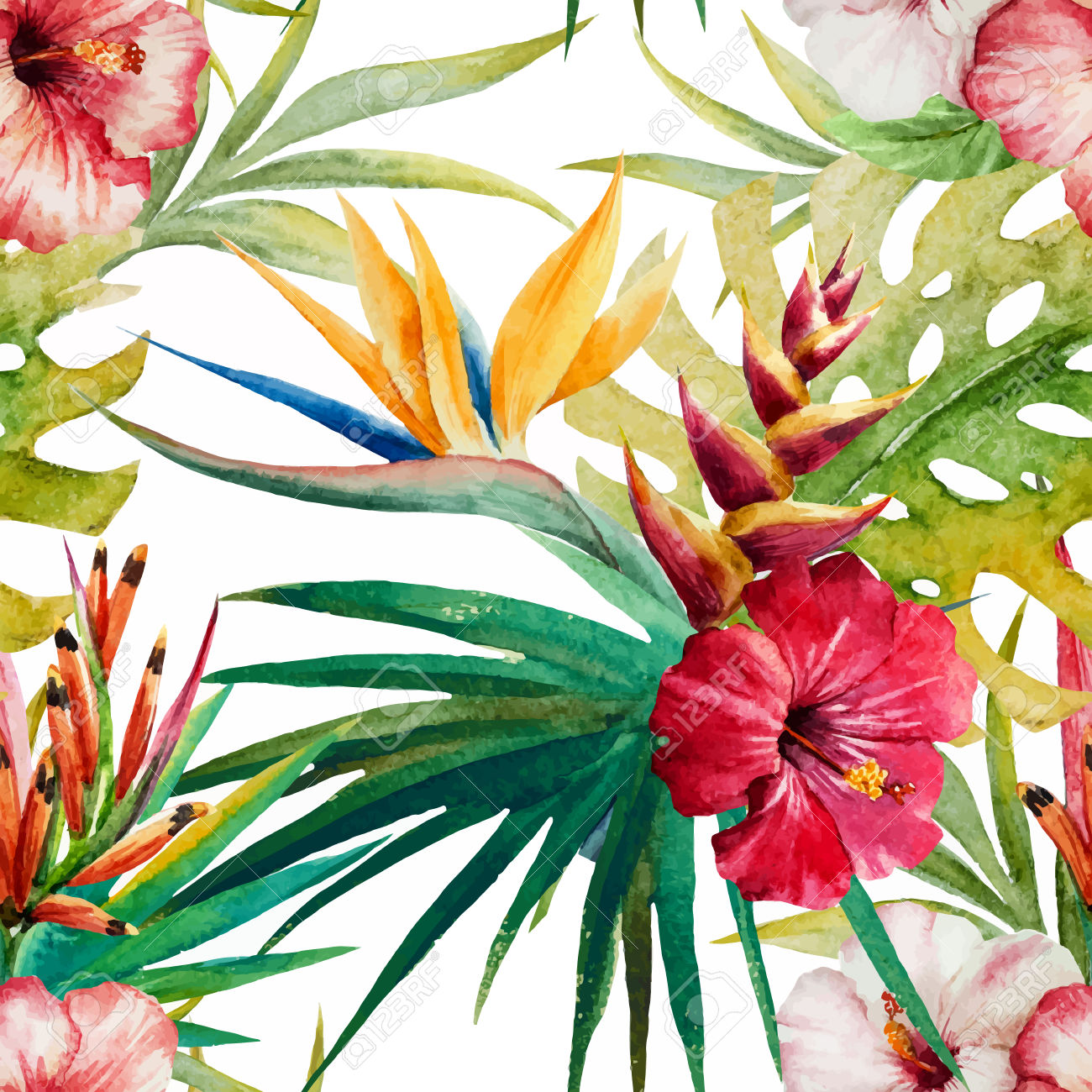 Caribbean clipart welcome flower Watercolor And Nice Vector Beautiful