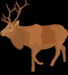 Caribou clipart #10