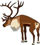 Caribou clipart #8