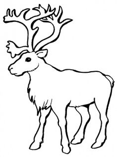 Caribou clipart #1