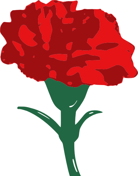 Carnation clipart #8