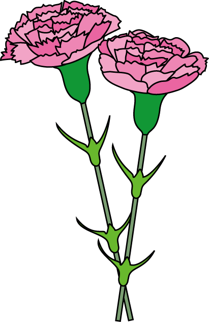 Carnation clipart #14