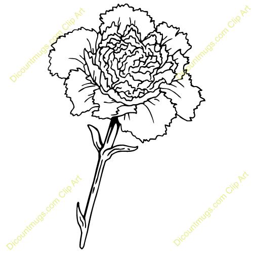 Carnation clipart black and white Art Flower Clip Like White