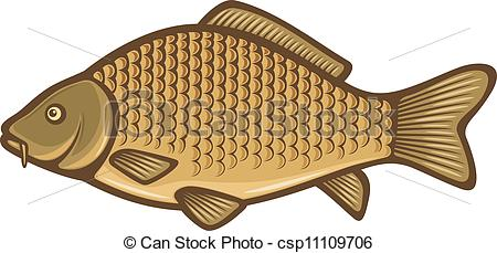 Fins clipart different fish Csp11109706 of Carp Search fish