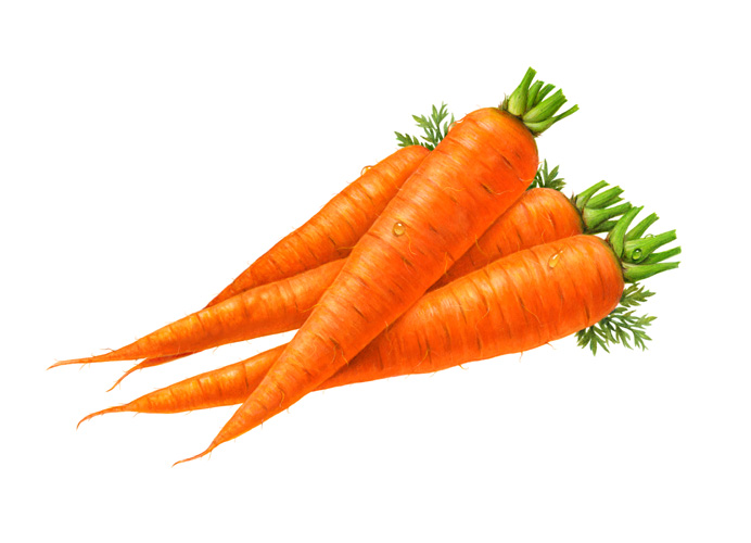 Carrot clipart four Images Free Images Clip Carrot