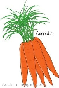 Carrot clipart animated Cartoon Clip collection Bunch clipart