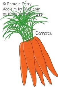 Carrot clipart bunch carrot A Tops Small Carrots a