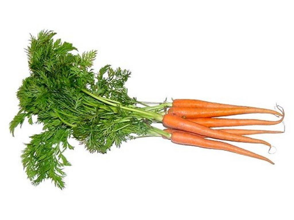 Carrot clipart bunch carrot Art Clip Carrot Bunch carrots
