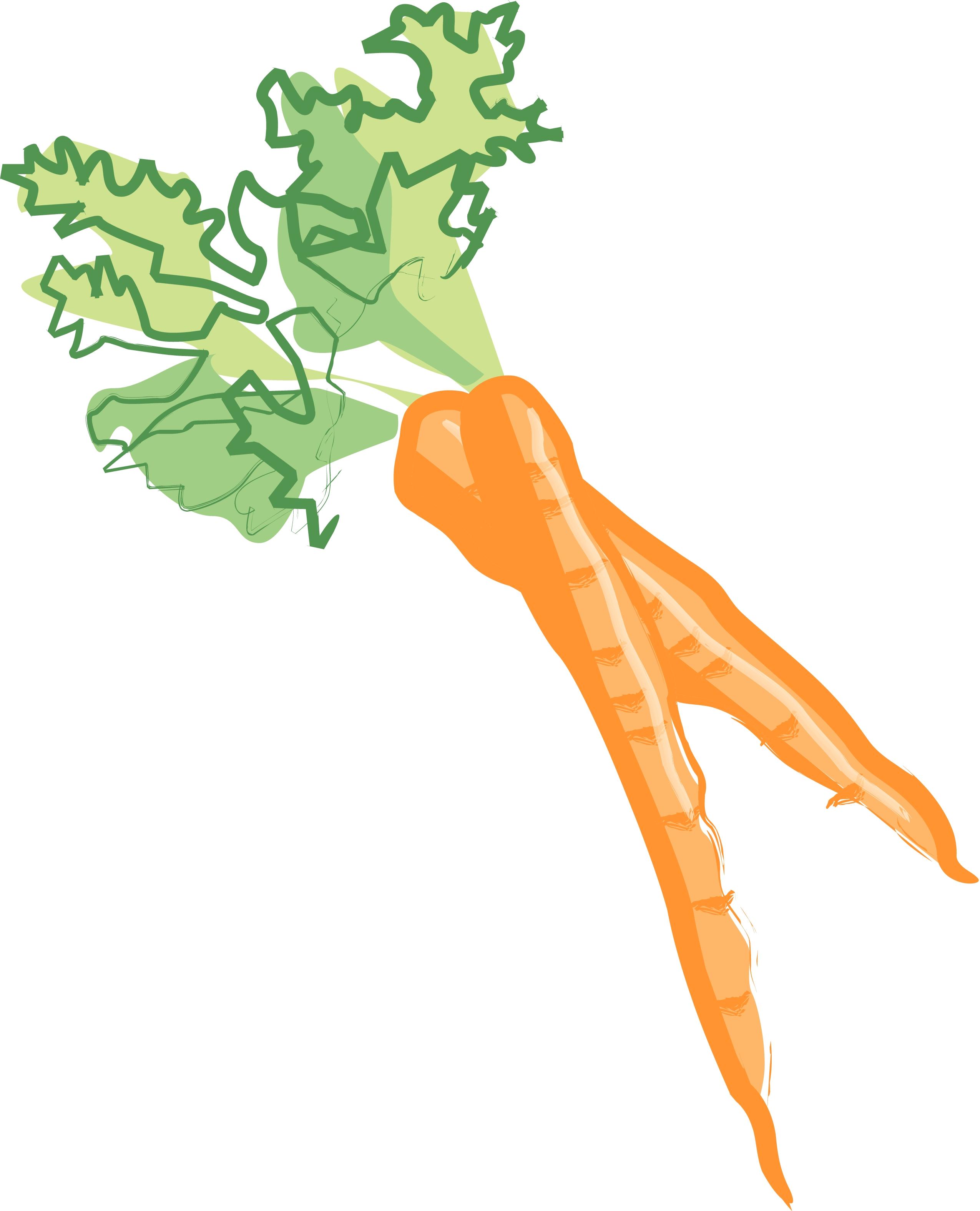 Carrot clipart bunch carrot Clipart Carrot Cut — art