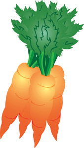 Carrot clipart bunch carrot Of Illustration Carrots Image Clipart