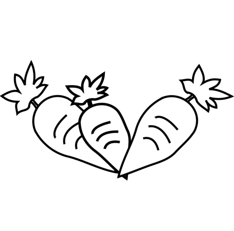 Carrot clipart coloring Page version Free Three Pages