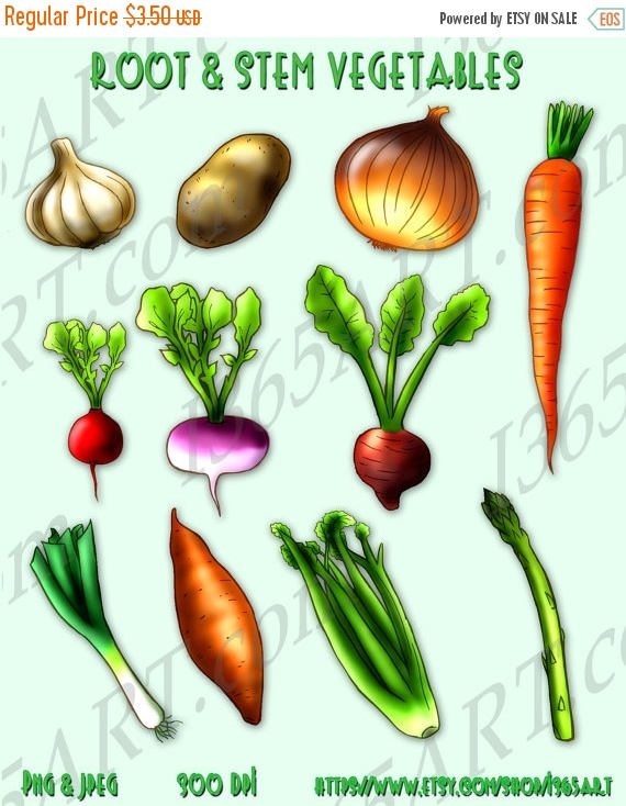 Carrot clipart food item Clipart Root Scrapbooking 50% and