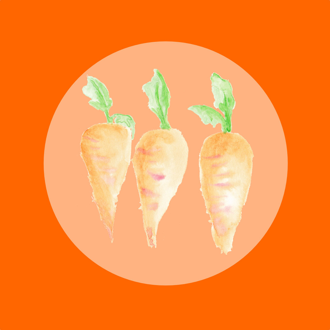 Carrot clipart food item From Download Clipart digital One