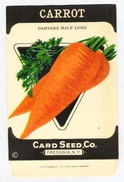 Carrot clipart half eaten Animal Art Seed Clip best