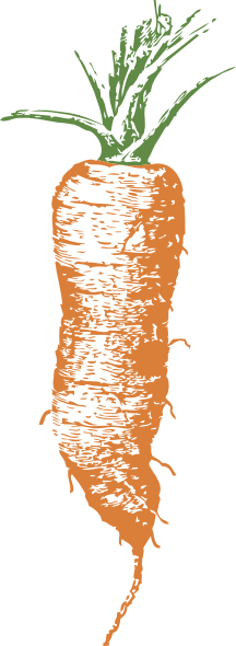 Carrot clipart long Online at com Clip royalty