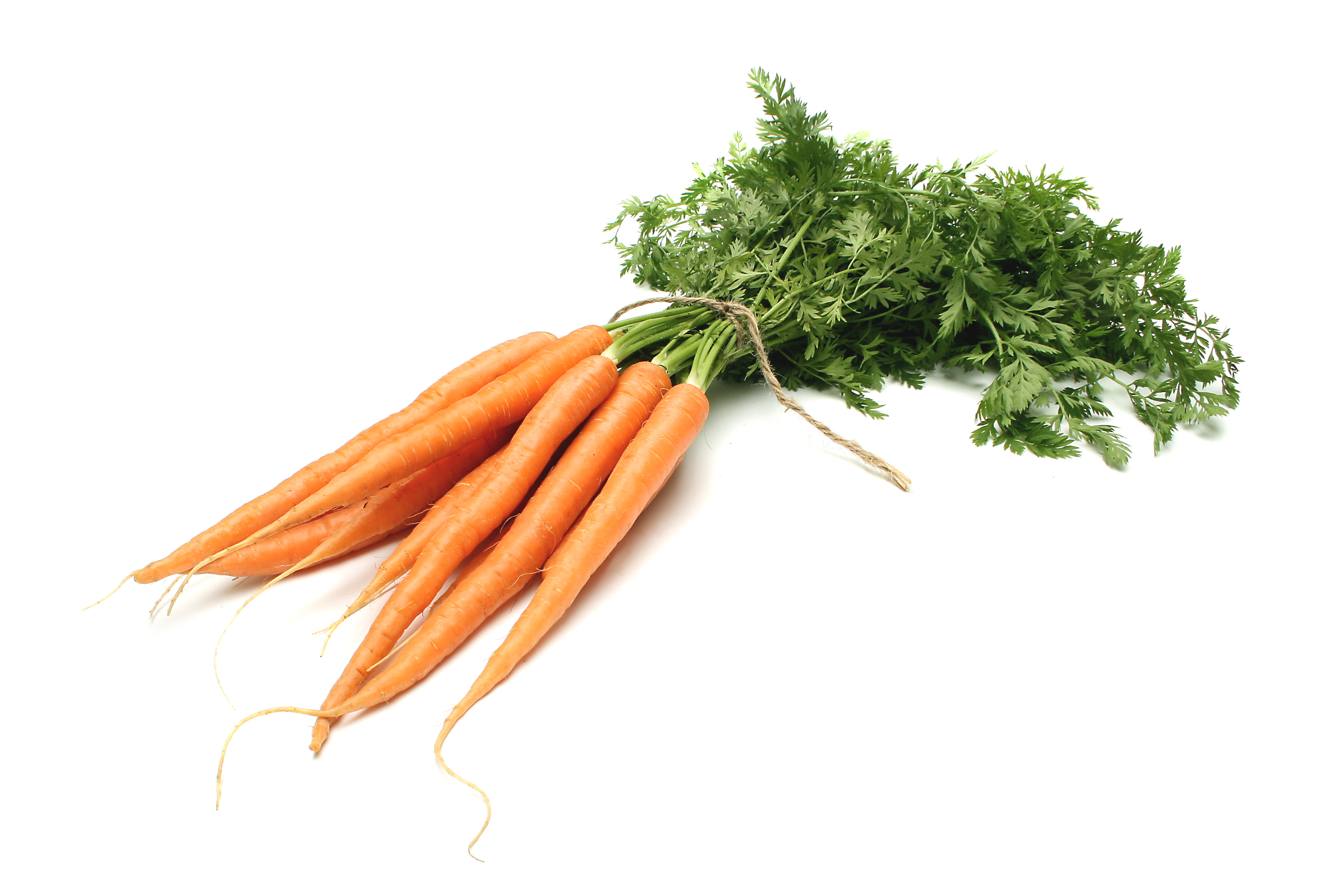 Carrot clipart nutritious food Benefits Facts And health Nutrition