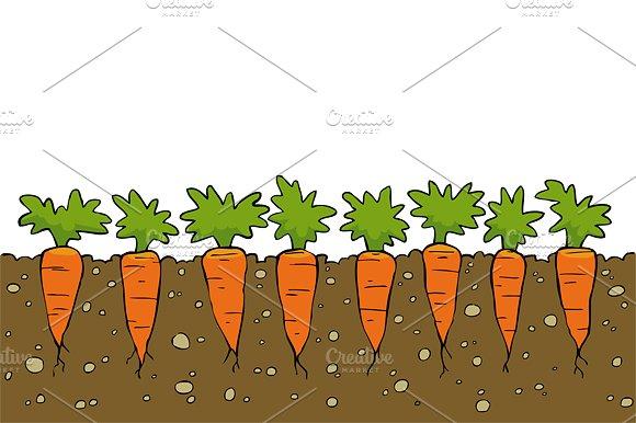 Carrot clipart row Illustrations ~ on Carrots Creative
