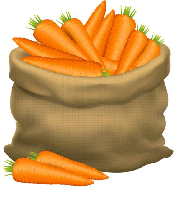 Carrot clipart thanksgiving food Fruit Photos Pinterest et 263