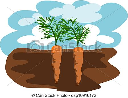 Carrot clipart two Carrots carrots in ground vector