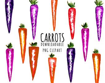 Carrot clipart vegitable Etsy Carrot Watercolour Hand Vegetable
