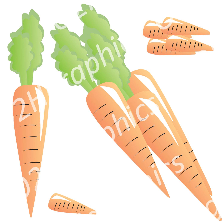 Carrot clipart vegitable Commercial Digital Clipart Vector Carrot