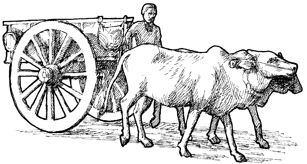 Cart clipart cow Index /images of