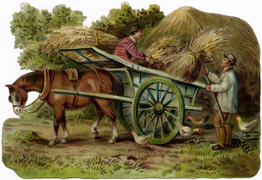 Drawn cart heavy horse Golden Golden Case cart pages