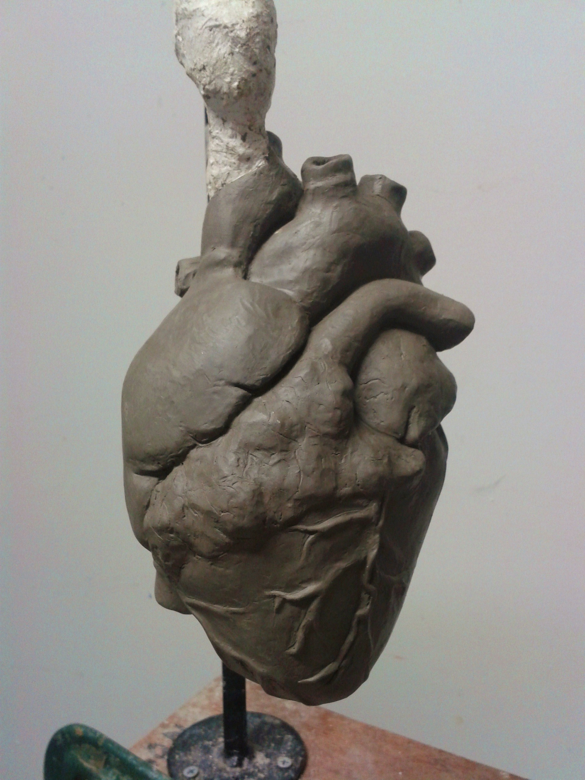 Carvings clipart clay Anatomical heart clay clay