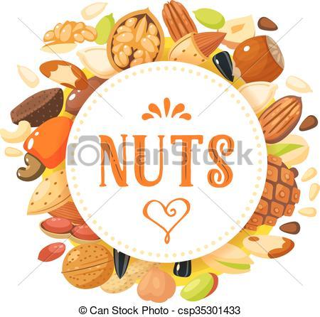 Cashew clipart walnut Pistachio pecan with seeds walnut