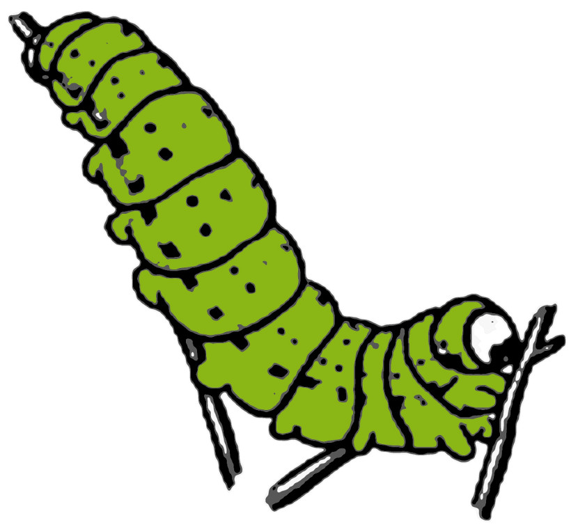 Caterpillar clipart #12