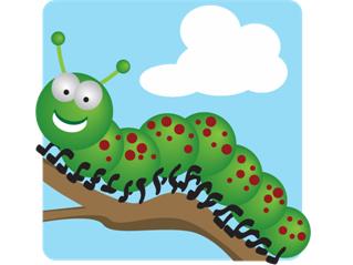 Caterpillar clipart minibeast Contents Minibeasts