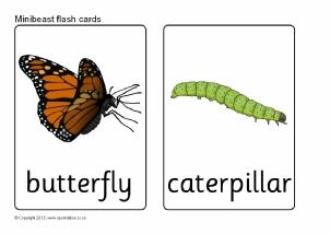 Caterpillar clipart minibeast KS1 SparkleBox Flash (SB7896) Activities