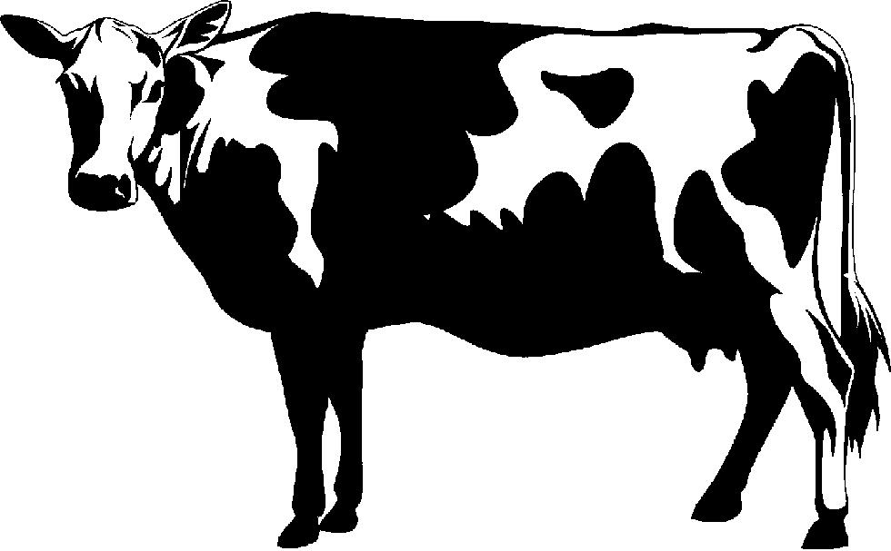 Cattle clipart Clipart Fans cattle clipart 0