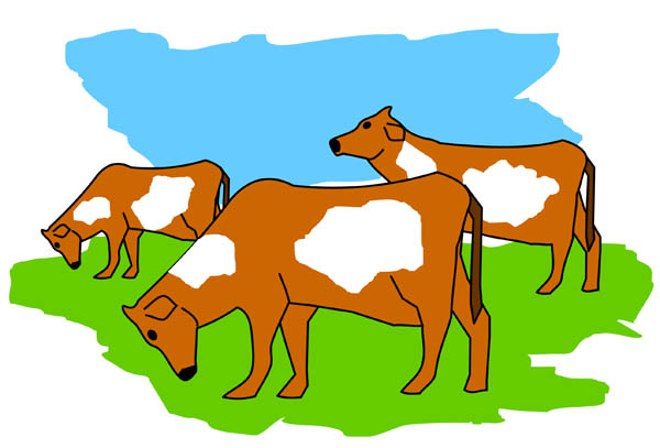 Cattle clipart cow family #7