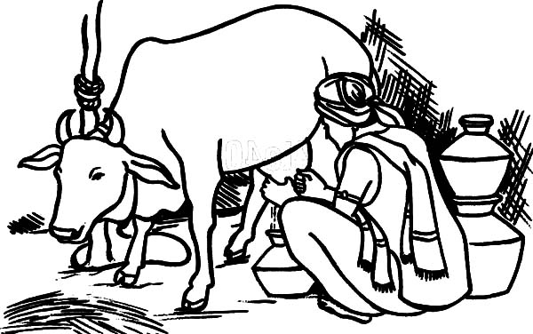 Cattle clipart indian farming #7