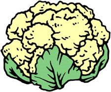 Cauliflower clipart outline On Download Free cliparts Free