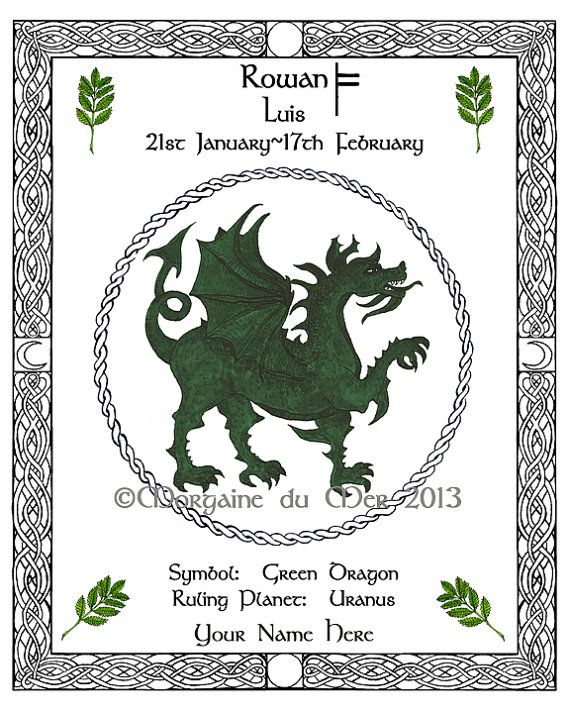Celt clipart astrology  you like tree will