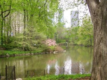 Central Park clipart On spring Com CentralPark best