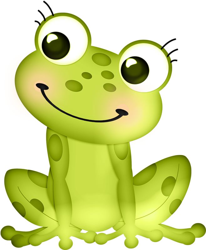 Red Eyed Tree Frog clipart cartoon baby #9