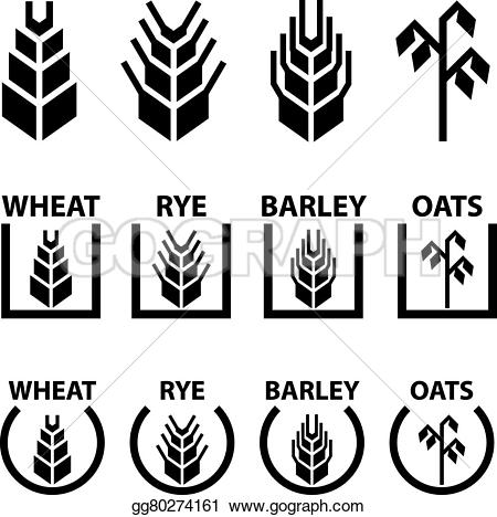 Cereal clipart rye Barley cereal illustration Clipart ears