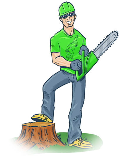 Climbing Tree clipart Me Removal Removal Orlando Service