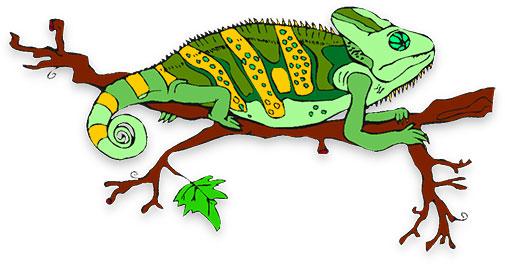 Reptile clipart chameleon #6