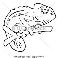 Drawn cameleon black and white  stock illustration royalty icon