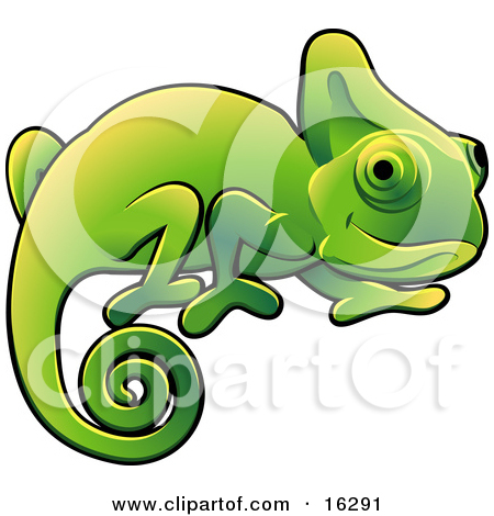 Reptile clipart chameleon #4