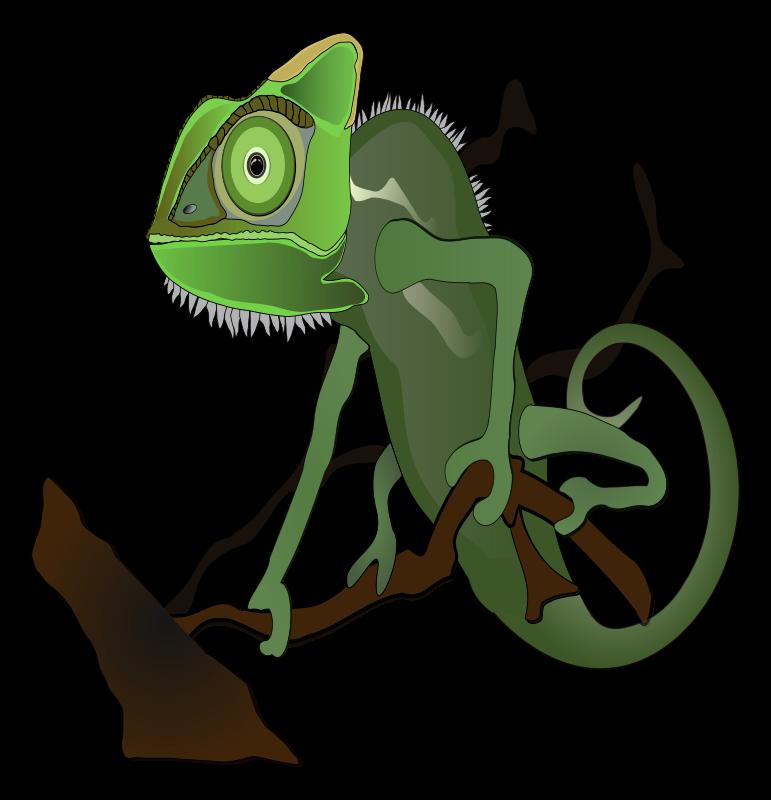 Cameleon clipart rainforest animal Chameleon_Animal_Clipart a Pictures Clipart:: Chameleon