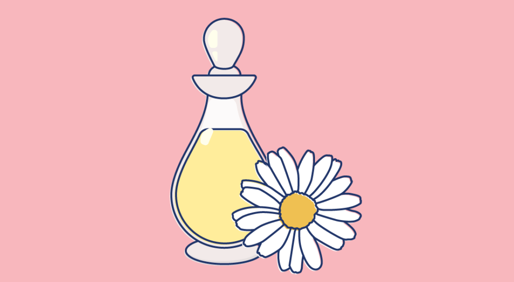 Chamomile clipart one Oil You Things Oil: a