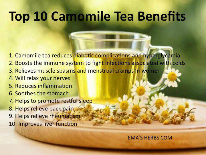 Chamomile clipart one Eating Reasons Tea to 10